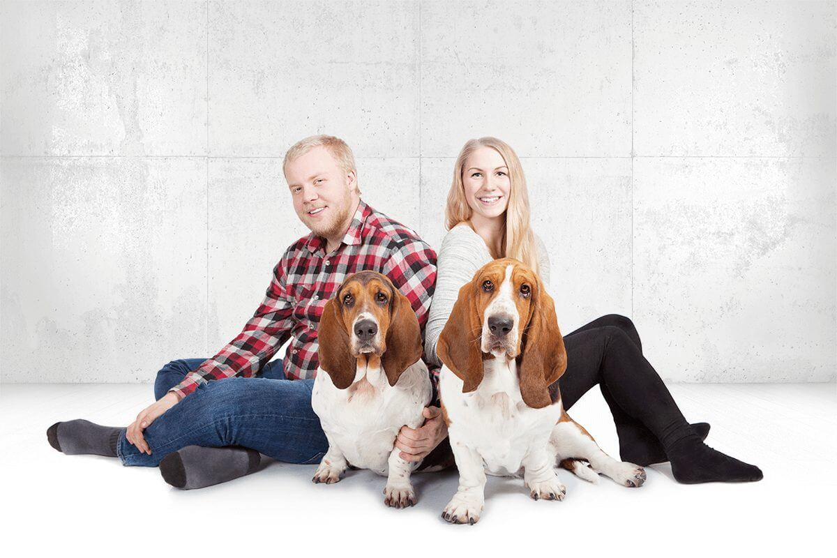 bassethound_fotostudio5